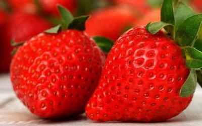Die dickste Erdbeere